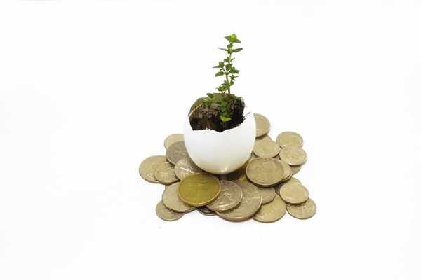 Kredyty bez bik Pleszew  zawnioskuj i wyślij sms o treści: WNIOSEK na 7393 (3.69 zł za sms)