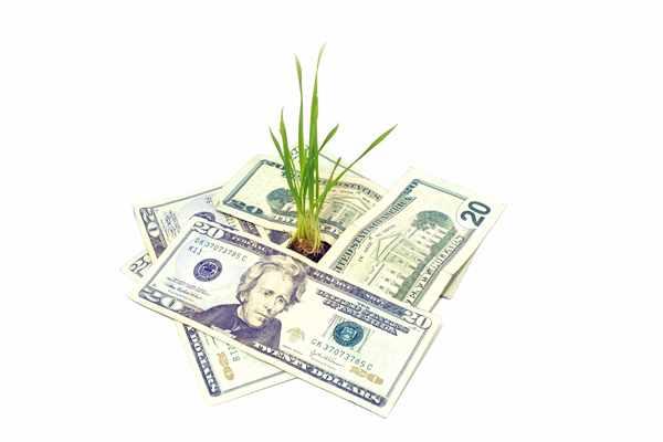Pożyczki bez bik Ozorków  wyślij sms o treści: WNIOSEK na 7393 (3.69 zł za sms)
